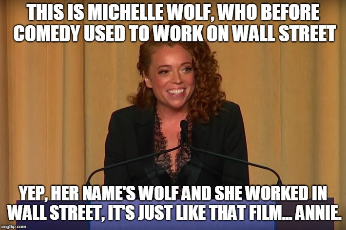 True Fact! | THIS IS MICHELLE WOLF, WHO BEFORE COMEDY USED TO WORK ON WALL STREET YEP, HER NAME'S WOLF AND SHE WORKED IN WALL STREET, IT'S JUST LIKE THAT | image tagged in michelle wolf,funny,leonardo dicaprio wolf of wall street,wolf of wall street,movies,memes | made w/ Imgflip meme maker