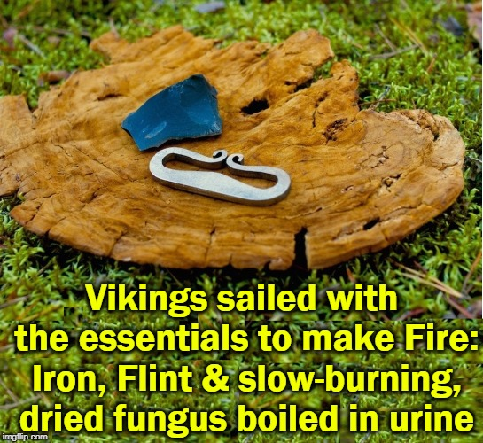 Not Ancient Aliens, Human Ingenuity | Vikings sailed with the essentials to make Fire: Iron, Flint & slow-burning, dried fungus boiled in urine | image tagged in vince vance,vikings,firestarter,flint,metal,dried wood ear | made w/ Imgflip meme maker