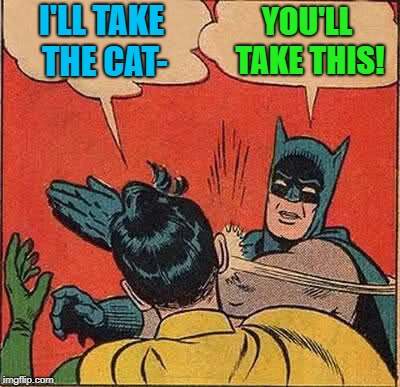 Batman Slapping Robin Meme | I'LL TAKE THE CAT- YOU'LL TAKE THIS! | image tagged in memes,batman slapping robin | made w/ Imgflip meme maker