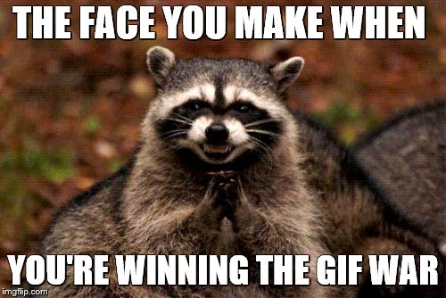 Evil Plotting Raccoon Meme | THE FACE YOU MAKE WHEN YOU'RE WINNING THE GIF WAR | image tagged in memes,evil plotting raccoon | made w/ Imgflip meme maker