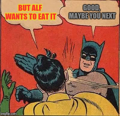 Batman Slapping Robin Meme | BUT ALF WANTS TO EAT IT GOOD, MAYBE YOU NEXT | image tagged in memes,batman slapping robin | made w/ Imgflip meme maker
