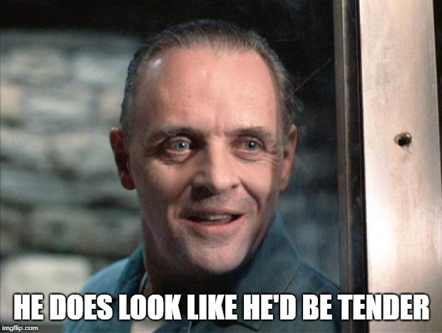Hannibal Lecter | HE DOES LOOK LIKE HE'D BE TENDER | image tagged in hannibal lecter | made w/ Imgflip meme maker
