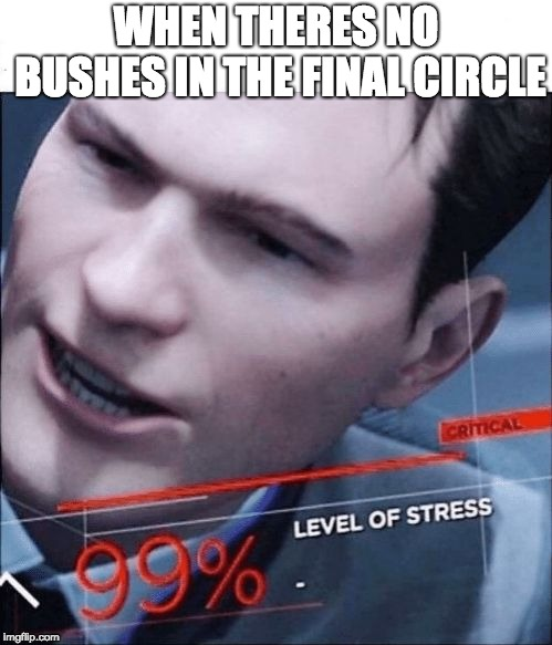 99% Level of Stress | WHEN THERES NO BUSHES IN THE FINAL CIRCLE | image tagged in 99 level of stress | made w/ Imgflip meme maker