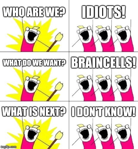 What Do We Want 3 | WHO ARE WE? IDIOTS! WHAT DO WE WANT? BRAINCELLS! WHAT IS NEXT? I DON'T KNOW! | image tagged in memes,what do we want 3 | made w/ Imgflip meme maker