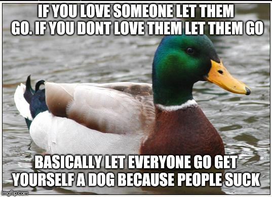 Actual Advice Mallard Meme | IF YOU LOVE SOMEONE LET THEM GO. IF YOU DONT LOVE THEM LET THEM GO BASICALLY LET EVERYONE GO GET YOURSELF A DOG BECAUSE PEOPLE SUCK | image tagged in memes,actual advice mallard | made w/ Imgflip meme maker