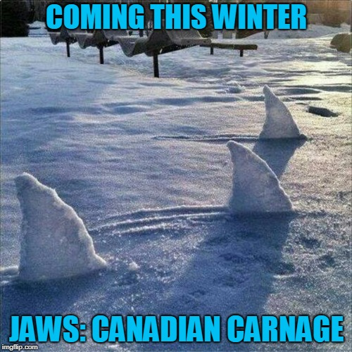 With Global Warming, It Was Just A Matter Of Time... | COMING THIS WINTER JAWS: CANADIAN CARNAGE | image tagged in jaws,canada,great white shark,great white north | made w/ Imgflip meme maker
