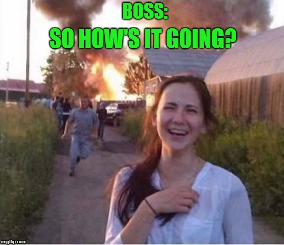 fine everything's just fine | BOSS: SO HOW'S IT GOING? | image tagged in bad day,everything's fine,funny | made w/ Imgflip meme maker