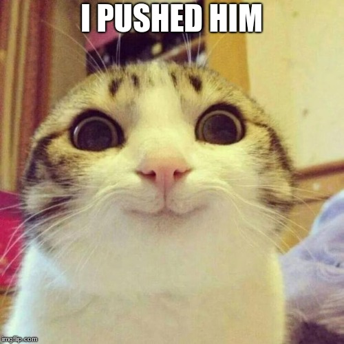 Smiling Cat Meme | I PUSHED HIM | image tagged in memes,smiling cat | made w/ Imgflip meme maker