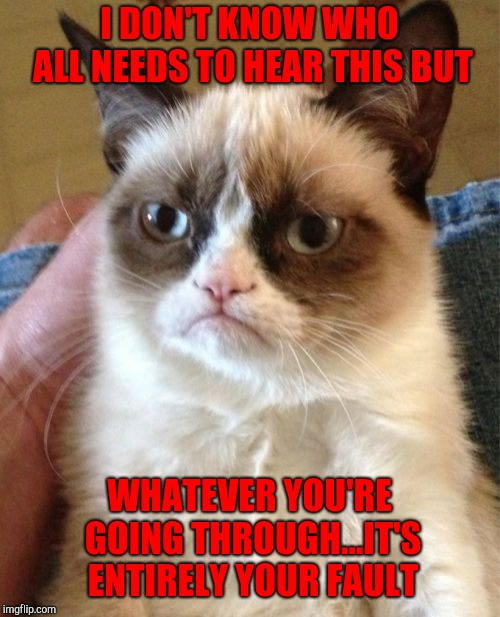 That's grumpy cat for ya!!! | I DON'T KNOW WHO ALL NEEDS TO HEAR THIS BUT WHATEVER YOU'RE GOING THROUGH...IT'S ENTIRELY YOUR FAULT | image tagged in memes,grumpy cat,fault,funny,blame,cats | made w/ Imgflip meme maker