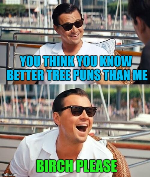 Tree puns are knot very poplar! | YOU THINK YOU KNOW BETTER TREE PUNS THAN ME BIRCH PLEASE | image tagged in memes,leonardo dicaprio wolf of wall street,tree puns,trees,funny,punny | made w/ Imgflip meme maker