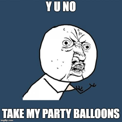 Y U No Meme | Y U NO TAKE MY PARTY BALLOONS | image tagged in memes,y u no | made w/ Imgflip meme maker