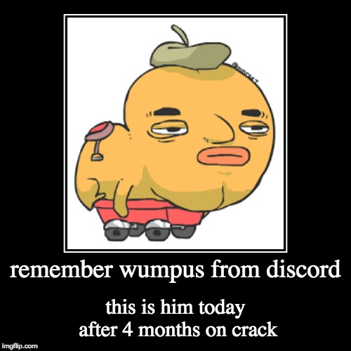 remember wumpus from discord | this is him today after 4 months on crack | image tagged in funny,demotivationals | made w/ Imgflip demotivational maker