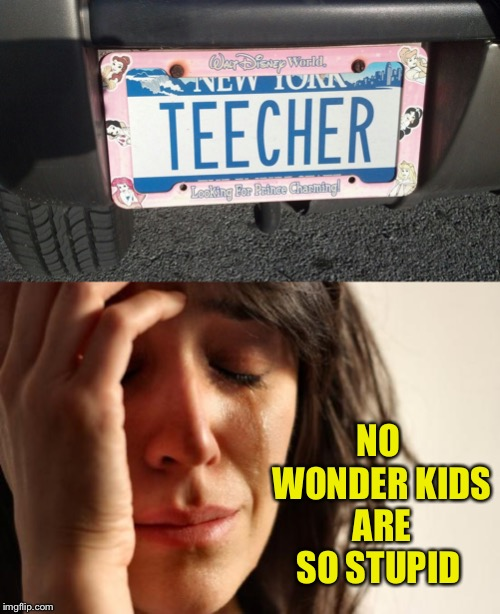 That explains the typos :-) | NO WONDER KIDS ARE SO STUPID | image tagged in memes,first world problems,blame the teacher,license plate,typo | made w/ Imgflip meme maker