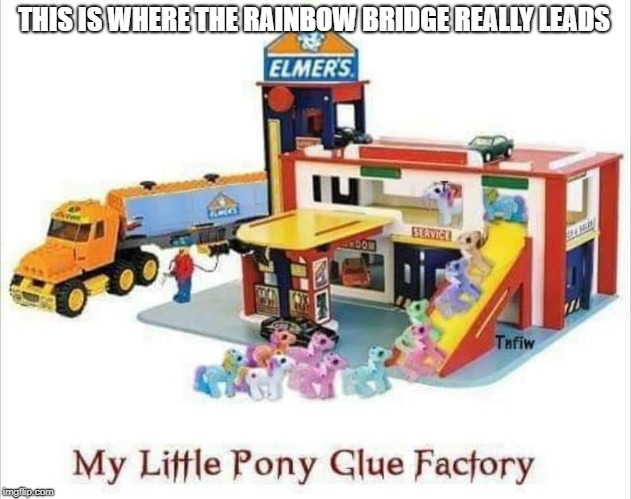 Time to teach the kiddies about the sad realities of life. | THIS IS WHERE THE RAINBOW BRIDGE REALLY LEADS | image tagged in brony,my little pony,death,taxes | made w/ Imgflip meme maker
