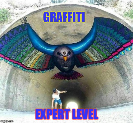 Cool |  GRAFFITI; EXPERT LEVEL | image tagged in graffiti,level expert,birds | made w/ Imgflip meme maker