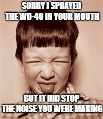 Try it!  It *really* works! | SORRY I SPRAYED THE WD-40 IN YOUR MOUTH BUT IT DID STOP THE NOISE YOU WERE MAKING | image tagged in yuck dude,wd-40,shut up,you talk too much | made w/ Imgflip meme maker