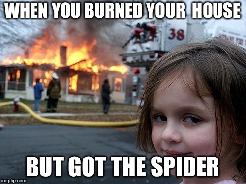 Disaster Girl Meme | WHEN YOU BURNED YOUR  HOUSE BUT GOT THE SPIDER | image tagged in memes,disaster girl | made w/ Imgflip meme maker