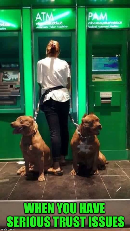 At least no one is looking over her shoulder |  WHEN YOU HAVE SERIOUS TRUST ISSUES | image tagged in atm,bank,pitbulls,trust issues,guard,dogs | made w/ Imgflip meme maker