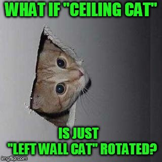 "Ceiling Cat | WHAT IF ""CEILING CAT"" IS JUST       ""LEFT WALL CAT"" ROTATED? 