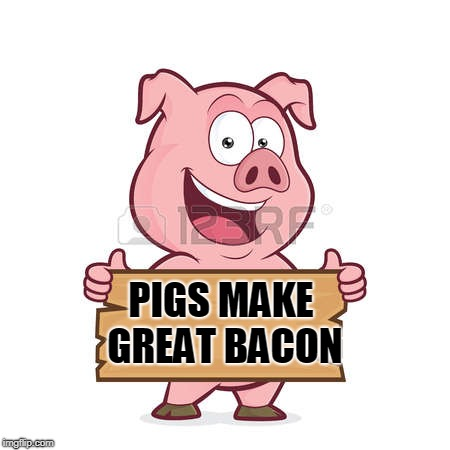 pig | PIGS MAKE GREAT BACON | image tagged in pig | made w/ Imgflip meme maker