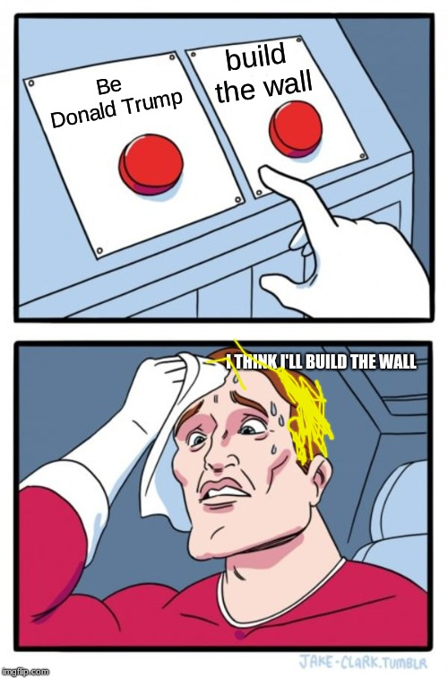Two Buttons Meme | Be Donald Trump build the wall I THINK I'LL BUILD THE WALL | image tagged in memes,two buttons | made w/ Imgflip meme maker