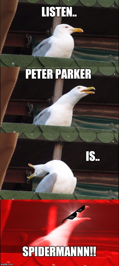 Inhaling Seagull Meme | LISTEN.. PETER PARKER IS.. SPIDERMANNN!! | image tagged in memes,inhaling seagull | made w/ Imgflip meme maker