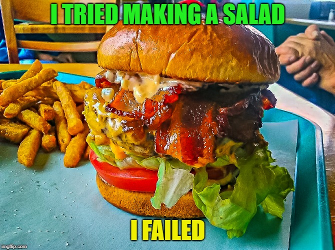 hamburger | I TRIED MAKING A SALAD I FAILED | image tagged in hamburger | made w/ Imgflip meme maker