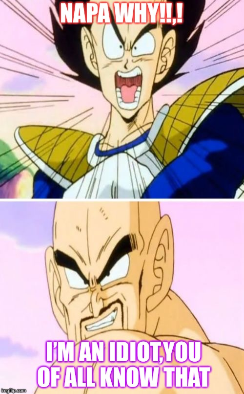 No Nappa Its A Trick | NAPA WHY!!,! I'M AN IDIOT,YOU OF ALL KNOW THAT | image tagged in memes,no nappa its a trick | made w/ Imgflip meme maker