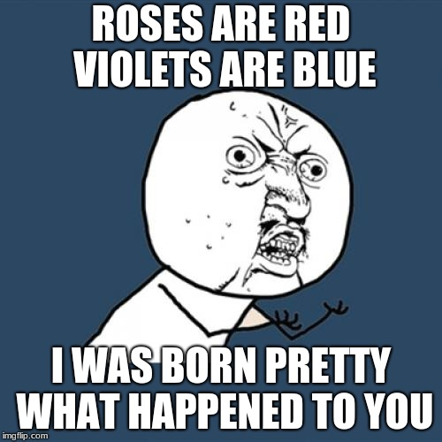 Y U No | ROSES ARE RED VIOLETS ARE BLUE I WAS BORN PRETTY WHAT HAPPENED TO YOU | image tagged in memes,y u no | made w/ Imgflip meme maker