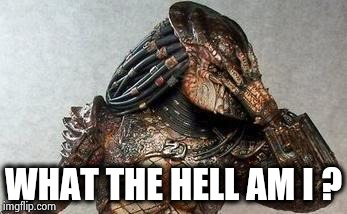 Predator facepalm | WHAT THE HELL AM I ? | image tagged in predator facepalm | made w/ Imgflip meme maker