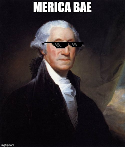 MERICA!!!!!  | MERICA BAE | image tagged in memes,george washington | made w/ Imgflip meme maker