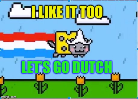 dutch nyan cat | I LIKE IT TOO LET'S GO DUTCH | image tagged in dutch nyan cat | made w/ Imgflip meme maker