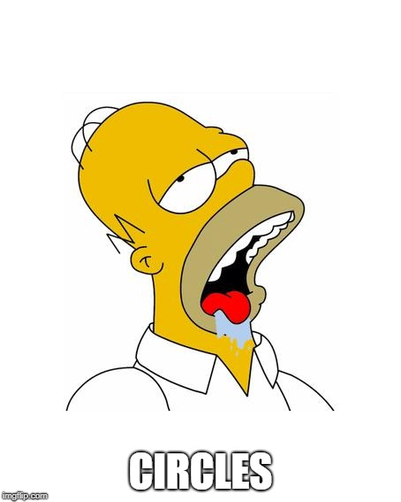 Homer Simpson Drooling | CIRCLES | image tagged in homer simpson drooling | made w/ Imgflip meme maker