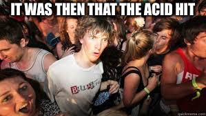 Suddenly realized | IT WAS THEN THAT THE ACID HIT | image tagged in suddenly realized | made w/ Imgflip meme maker