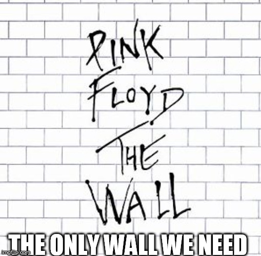 THE ONLY WALL WE NEED | image tagged in wall,trump,trump wall | made w/ Imgflip meme maker