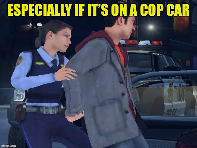 Female Cop | ESPECIALLY IF IT'S ON A COP CAR | image tagged in female cop | made w/ Imgflip meme maker
