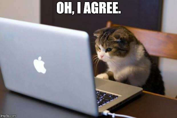 Cat using computer | OH, I AGREE. | image tagged in cat using computer | made w/ Imgflip meme maker