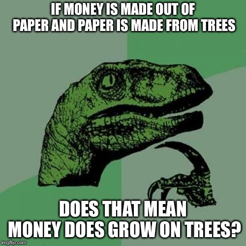 Philosoraptor | IF MONEY IS MADE OUT OF PAPER AND PAPER IS MADE FROM TREES DOES THAT MEAN MONEY DOES GROW ON TREES? | image tagged in memes,philosoraptor | made w/ Imgflip meme maker