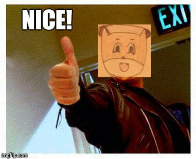 terminator thumbs up | NICE! | image tagged in terminator thumbs up | made w/ Imgflip meme maker