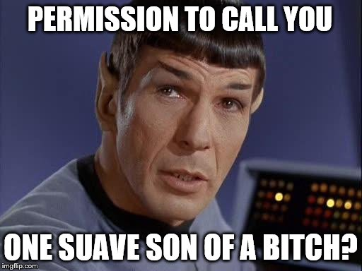 Mr. Spock | PERMISSION TO CALL YOU ONE SUAVE SON OF A B**CH? | image tagged in mr spock | made w/ Imgflip meme maker