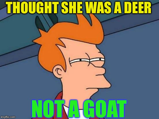 Futurama Fry Meme | THOUGHT SHE WAS A DEER NOT A GOAT | image tagged in memes,futurama fry | made w/ Imgflip meme maker