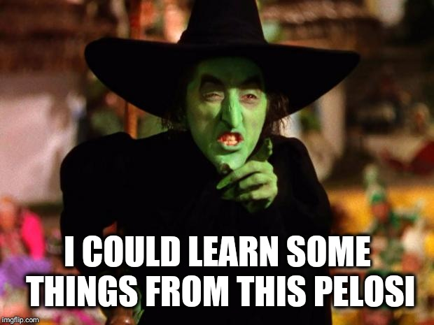 wicked witch  | I COULD LEARN SOME THINGS FROM THIS PELOSI | image tagged in wicked witch | made w/ Imgflip meme maker