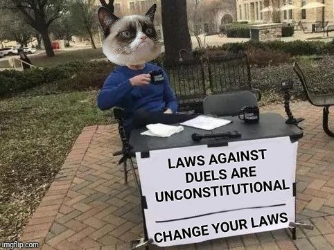 Grumpy Cat's favorite spectator sport. |  LAWS AGAINST DUELS ARE UNCONSTITUTIONAL; CHANGE YOUR LAWS | image tagged in change your mind,change my mind,grumpy cat,dueling,gun control,politics | made w/ Imgflip meme maker