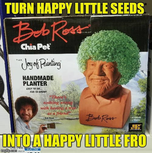 Chia pet - Bob Ross edition | TURN HAPPY LITTLE SEEDS INTO A HAPPY LITTLE FRO | image tagged in bob ross,chia pets,happy little trees | made w/ Imgflip meme maker