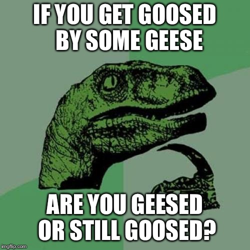 Philosoraptor | IF YOU GET GOOSED      BY SOME GEESE ARE YOU GEESED OR STILL GOOSED? | image tagged in memes,philosoraptor,goose,geese,what if | made w/ Imgflip meme maker