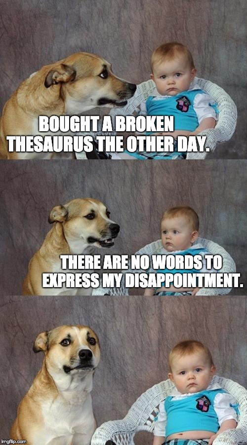 Dad Joke Dog Meme | BOUGHT A BROKEN THESAURUS THE OTHER DAY. THERE ARE NO WORDS TO EXPRESS MY DISAPPOINTMENT. | image tagged in memes,dad joke dog | made w/ Imgflip meme maker