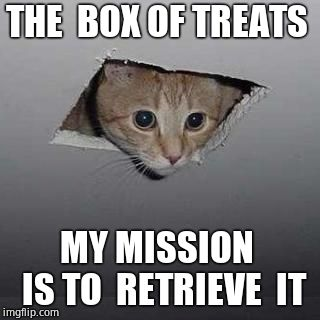 Ceiling Cat | THE  BOX OF TREATS MY MISSION  IS TO  RETRIEVE  IT | image tagged in memes,ceiling cat | made w/ Imgflip meme maker