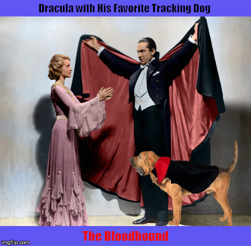 Dracula with His Favorite Tracking Dog | image tagged in dracula,count dracula,dog,bloodhound,funny,memes | made w/ Imgflip meme maker