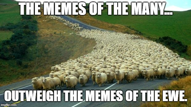 THE MEMES OF THE MANY... OUTWEIGH THE MEMES OF THE EWE. | image tagged in sheep | made w/ Imgflip meme maker