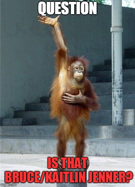 Monkey Raising Hand | QUESTION IS THAT BRUCE/KAITLIN JENNER? | image tagged in monkey raising hand | made w/ Imgflip meme maker